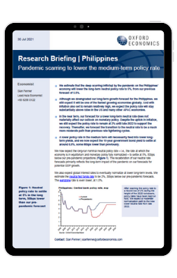 image of the research briefing
