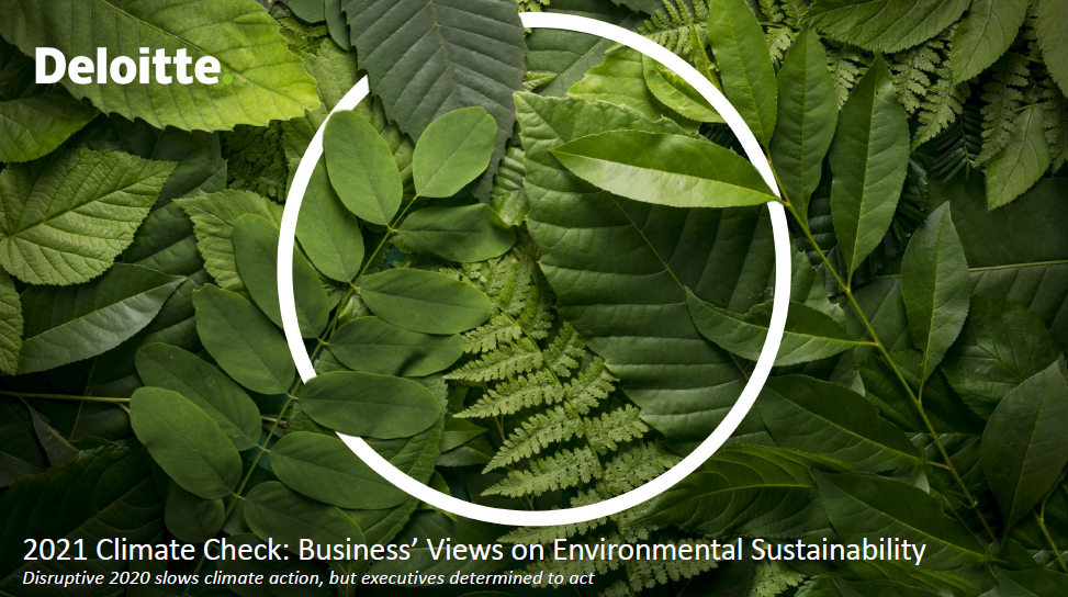 2021 Climate Check - Business Views on Environmental Sustainability