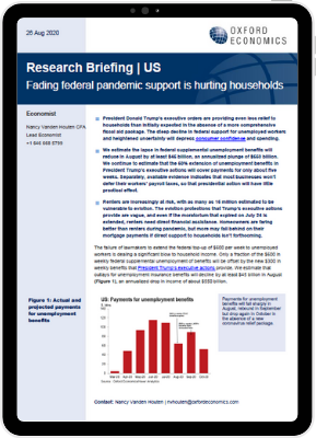 Fading federal pandemic support us hurting households - iPad