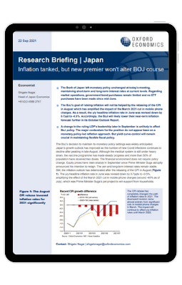 Report - Inflation tanked, but new premier won't alter BOJ course
